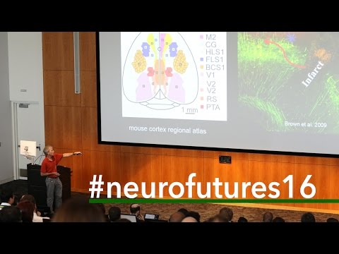 NeuroFutures 2016 | Tim Murphy