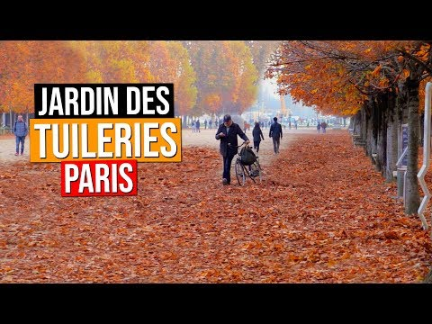 Jardin des Tuileries | Tuileries Garden - Paris, France | Automne | Fall | Autumn