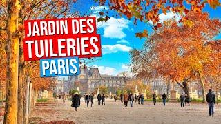 Jardin des Tuileries | Tuileries Garden - Paris, France | Automne | Fall | Autumn