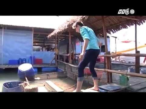 Khám phá Việt Nam: Bình yên Bà Rịa - Vũng Tàu
