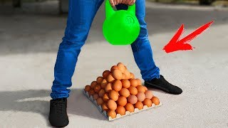 Experiment: Weight Vs Eggs