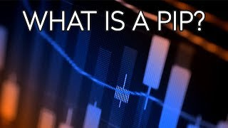 What is a PIP?  - Forex Terminology