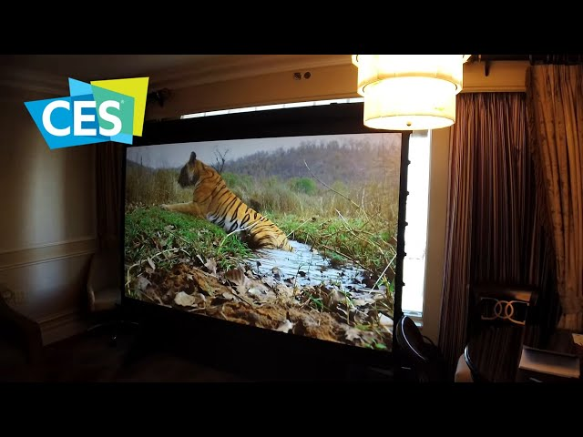 Elite Screens and their new ALR screens at CES 2020