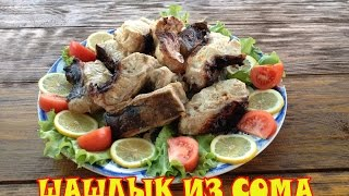 Шашлык из сома  Рецепт Сталика Ханкишиева