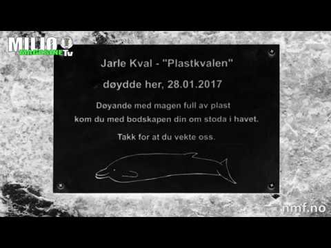 Minnemarkering for plasthvalen Jarle Kval