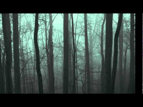 Inlakesh - Forest Gathering