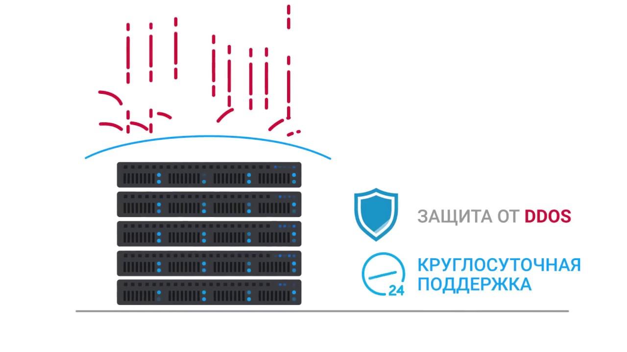 King Servers B.V. / ООО
