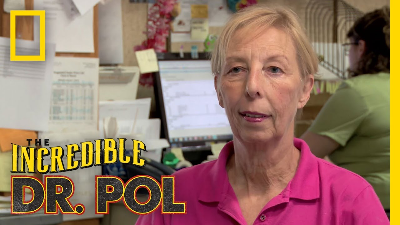 Chat With Diane Pol | The Incredible Dr  Pol