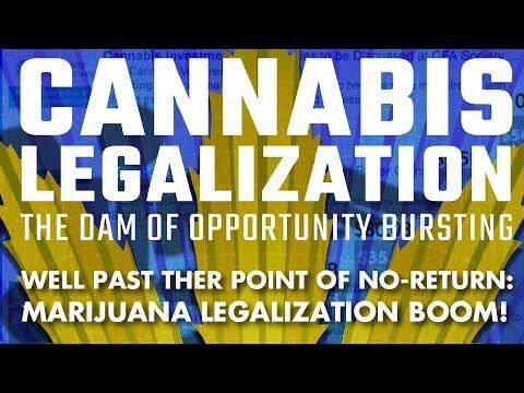 Cannabis Millionaires: California Is Opening The Doors!