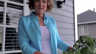 """Mother's Day """"salad In A Container"""" Garden"""