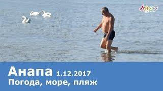 видео Где зимой на море тепло