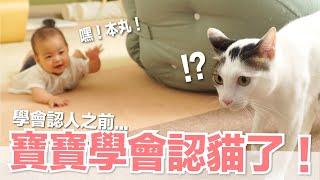 【小貓奴養成記EP13】寶寶學會認貓了在學會認人之前...