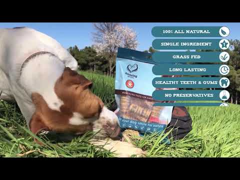 3-4-inch-beef-trachea--premium-dog-chews---excellent-source-of-glucosamine-and-chondroitin