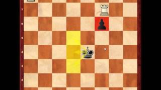 Chess Endgames - Rook versus Pawn Race