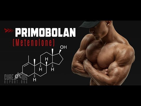 Primobolan (Primo) - Don't Buy Until You Read This 2019 Review!