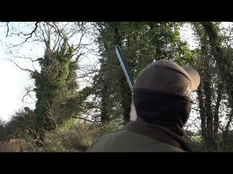 The Shooting Show - Irish pigeon shooting, the must-have Swarovski accessory and SHOT show 2017