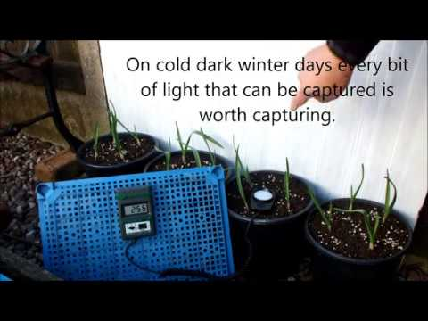 HGV How to capture winter sunshine in your garden start to finish.