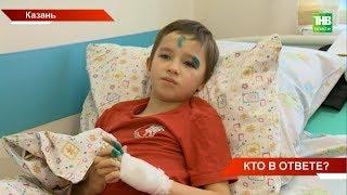 Центр Казани оказался во власти бродячих собак: агрессивная стая напала на детей - ТНВ