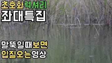 충북 괴산 초호화 럭셔리 좌대 특집! 밤새낚은 엄청난 조과공개!