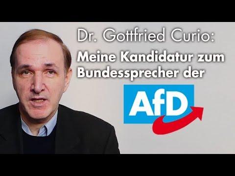 Bewerbung zum Bundessprecher der AfD | Dr. Gottfried Curio