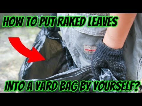 How to Put Raked Leaves Into a Yard Bag by Yourself