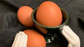 계란껍질 활용법 6가지 (+인덕션 찌든때 제거)