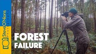 Delamere Forest Photoshoot - I think I failed