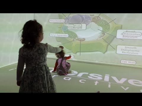 Immersive Interactive Ltd: Fully interactive, multi-sensory immersive rooms