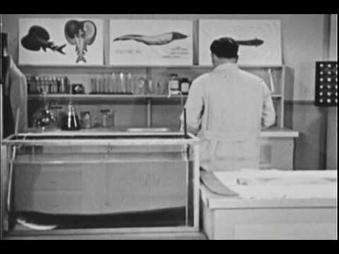 ~ Watch Full Classic Moody Institute of Science Films