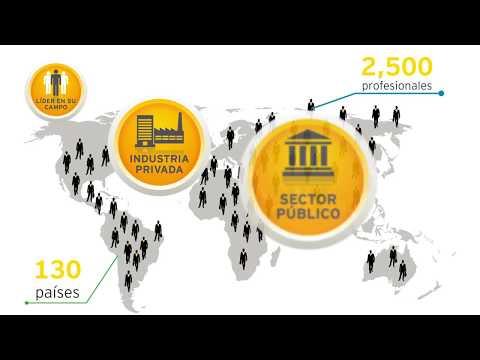 Servicios EY- Fraud Investigation & Dispute Services (FIDS)