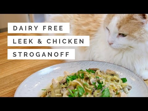 Dairy Free Leek & Chicken Stroganoff Easy & Healthy Recipe
