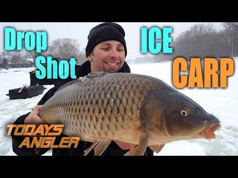 ICE FISHING CARP With Drop Shot and Corn INSANE