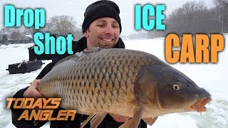 ICE FISHING CARP With Drop Shot and Corn   INSANE!!! - Automatic Fishermans - Todays Angler