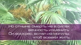 Ольга Вельгус. Лучший Друг