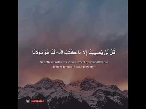 قل لن يصيبنا إلا ما كتب الله لنا ه