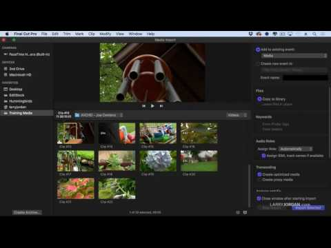 Tour the Media Import Window in FCPX (10.3)