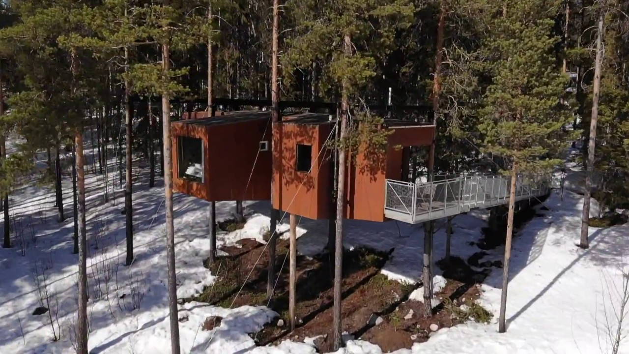 Tree Hotel In Harads Sweden Youtube