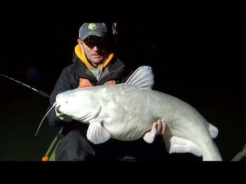 Fishing After Dark For Trophy Catfish