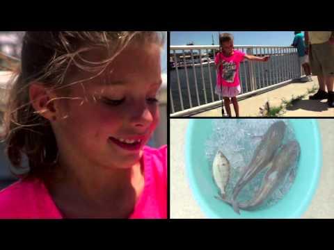 Episode 3 - Lionfish Roundup (1)