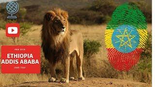 Video Our  trip to Ethiopia 2015 download MP3, 3GP, MP4, WEBM, AVI, FLV April 2018