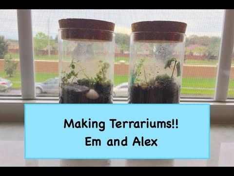 Making Terrariums! Em and Alex