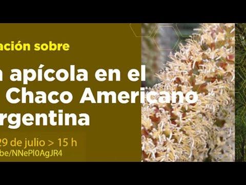 Capacitación sobre Flora Apícola del Gran Chaco Americano de Argentina (2ª parte)