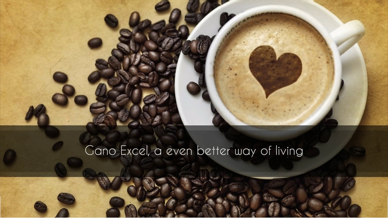 Image result for gano excel healthy coffee