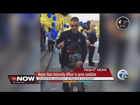 Wayne State University police officer in 'grave' condition, on life support after shooting