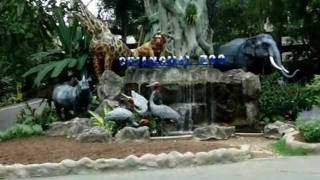 タイ.チェンマイ, パンティップ プラザ前からトゥクトゥクでチェンマイ...
