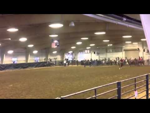 Aften Peterson & Fancy 2014 Big Piney High School Rodeo