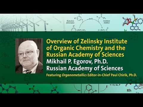Overview of Zelinsky Institute of Organic Chemistry and the Russian Academy of Sciences