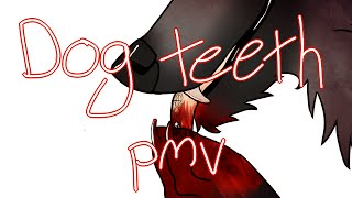 dog teeth pmv *READ DESCRIPTION! thumbnail