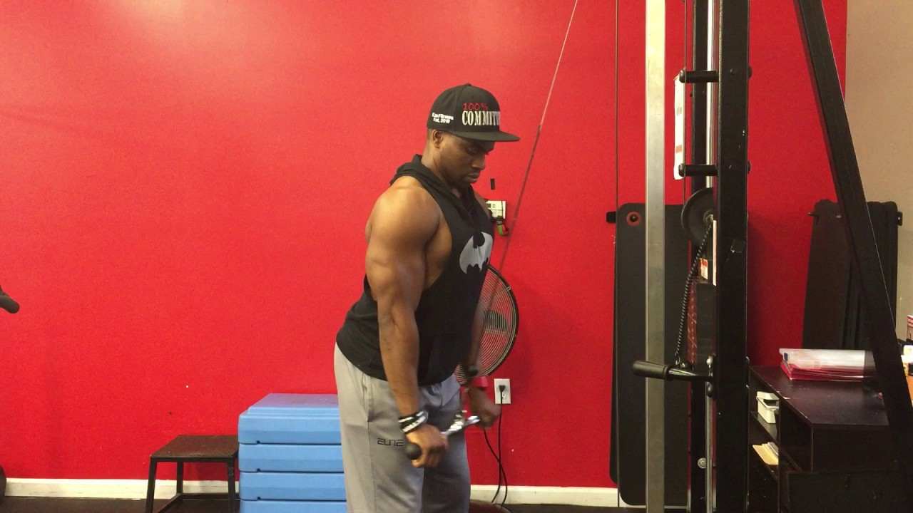 Cable Straight Bar Triceps Pulldown Youtube
