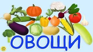 Развивающий мультфильм про овощи  для самых маленьких. Развивающий мультик для детей